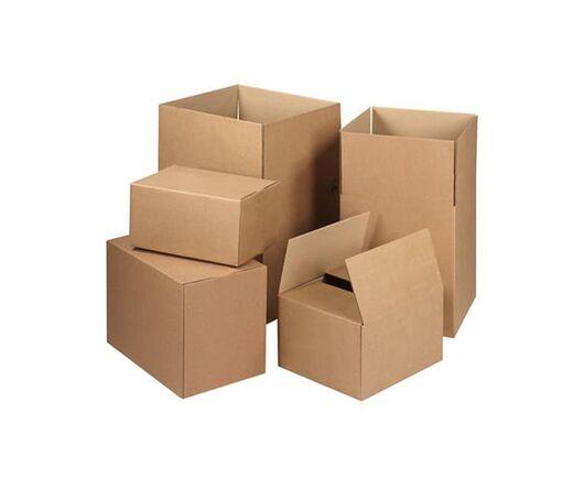 Коробка картонная 20 шт (250*170*100)