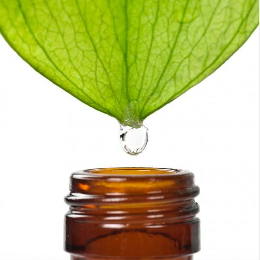 Cosme-phytamis Зеленый чай 10 г