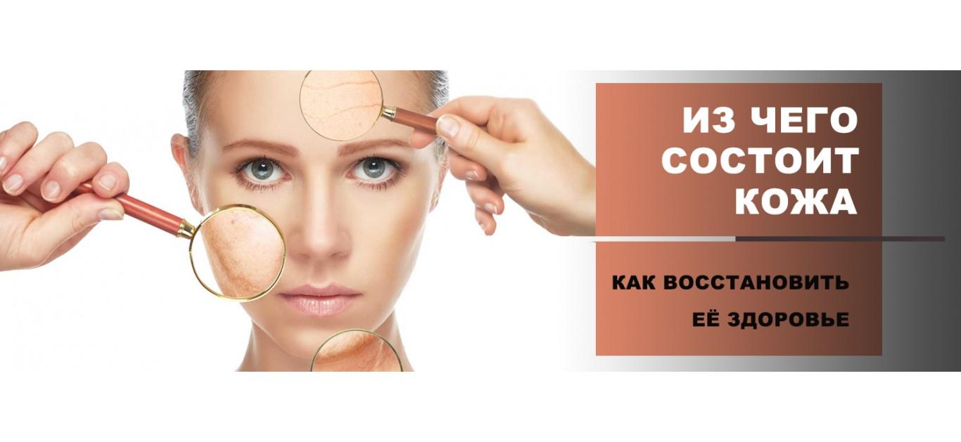 Из чего состоит кожа и как восстановить ее здоровье?