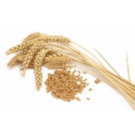 Гидролизат пшеницы 10 г.
