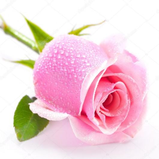 Бленд Нежная роза 10 мл